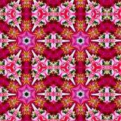 Pink Garden Lily