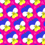 Pansies on Pink background