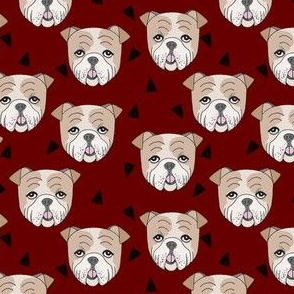english bulldogs // maroon smaller burgundy dog dogs pet dog cute dog face adorable pet dog