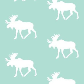 moose on spa || the yellowstone collection