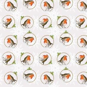 Robins & snowflakes