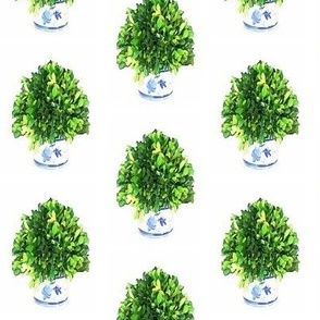 Round Boxwood Topiary in Blue and White Cachepot
