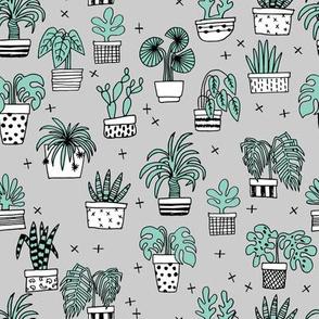 houseplants // plants palm print plants houseplant cactus cacti grey kids plant plants