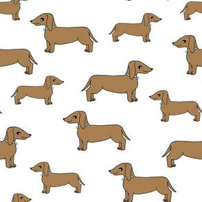 doxie //  cute dog pet dog  dachshund wiener dog weiner dog sweet pet dog adorable sausage dog fabric