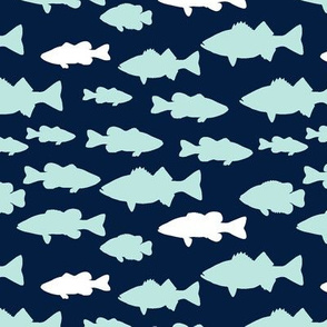 fish || the bear creek collection