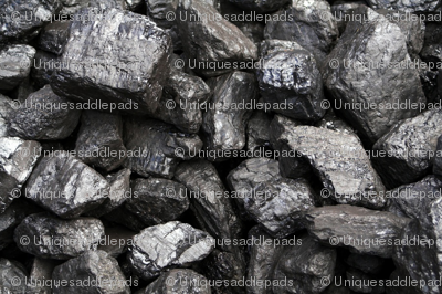 Bigstock-coal-_ed_preview