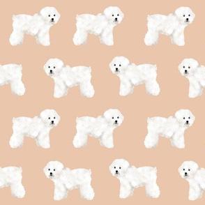 bichon frise sand tan bichon dog breed fabric dogs cute dog