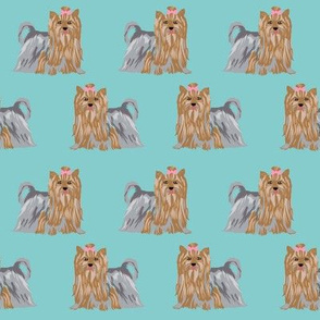 yorkshire terrier yorkie cute show coat long haired yorkie fabric cute dog breed fabric for dog lovers