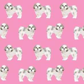 shih tzu fabric cute pink shih tzu dog coat sweet dogs pet dog adorable shih tzu