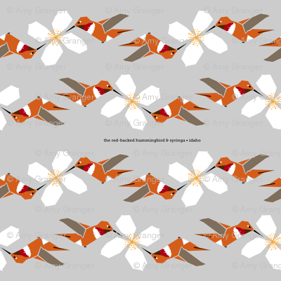 Syringa_hummingbird_duets_18x18_preview