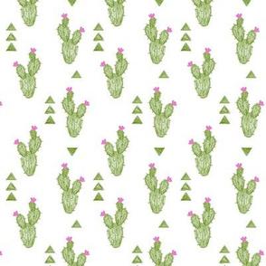 Crayon Cactus