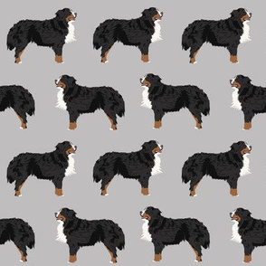 bernese mountain dog fabric bernese mountain dog dog breed design dog breed fabric dogs cute dog design best dog pet dog fabric