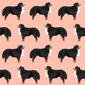 bernese mountain dog fabric peach blush dog fabric dog breed fabric bernese mountain dog design cute dogs