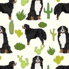 bernese mountain dog breed fabric cute cactus design cactus fabric dog fabric dogs dog breed cactus dog breed