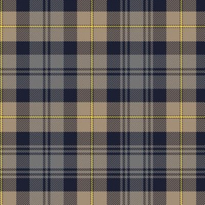 Gordon Highlanders tartan, weathered