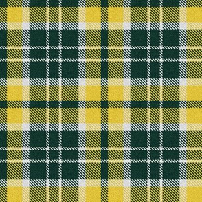 Greenish Black and Yellow Plaid
