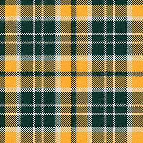 Greenish Black and Orange Plaid