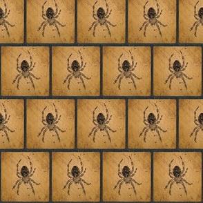 Female Barn Spider Silhouette Blocks