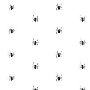 polka dot spider