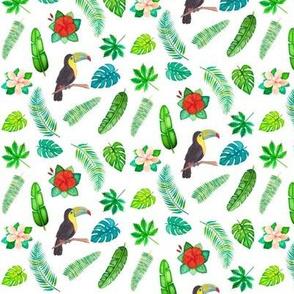 Toucan Tropical