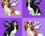Rcavalier_spaniels_in_purple_thumb