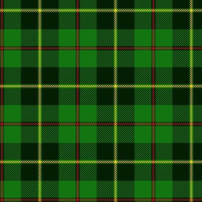 Galloway hunting tartan - dark, yellow line