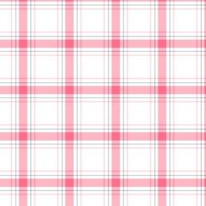 pink + grey plaid 1