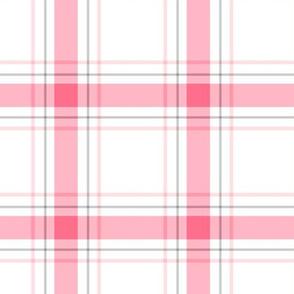 pink + grey plaid 1 LG