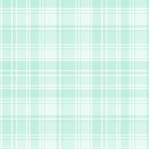 plaid mint green 2