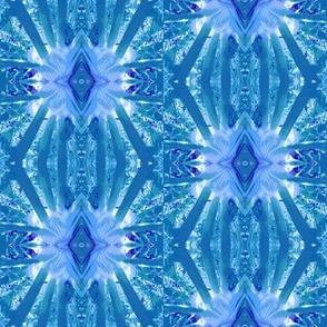 I love blue 5, fennel stars