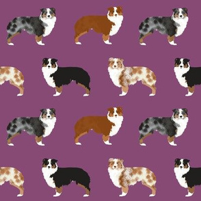 australian shepherd dogs cute pet dog aussie dogs red merle blue merle best dog fabric cute dogs best aussie dog fabrics sweet pet dog fabric