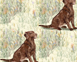 Chocolate_lab_sitting_in_wildflowers_rev_thumb