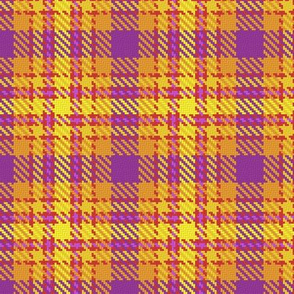 Bright_Plaid_Maker