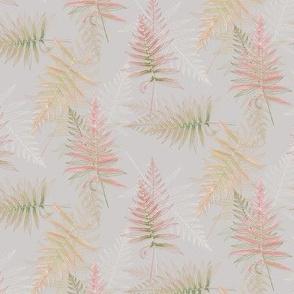 spring_ferns