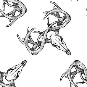 Deer Skull Diagonal White