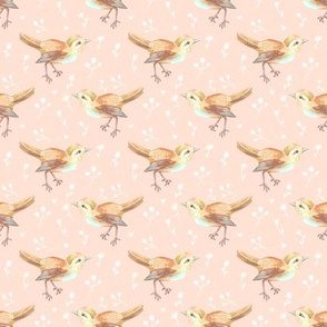 Bird Faded on Pale Peach Floral