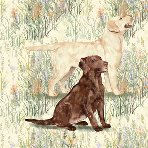 Chocolate and Yellow Lab in Wildflowers 2