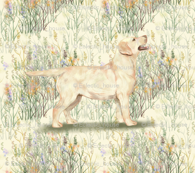 Yellow_lab_in_field_of_wildflowers_2_rev3_preview
