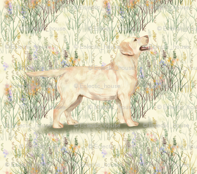 Yellow_lab_in_field_of_wildflowers_rev_preview