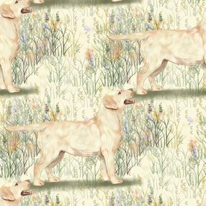 Yellow Lab in field of wildflowers