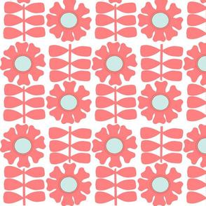 Coral Daisies
