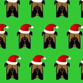 Santa Boxer