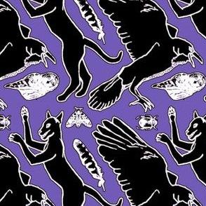 The Creatures of Edgar Allen Poe on Purple