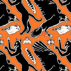 The Creatures of Edgar Allen Poe on Orange