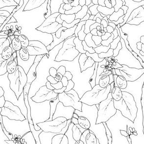 Gardenias and Kumquats Black and White