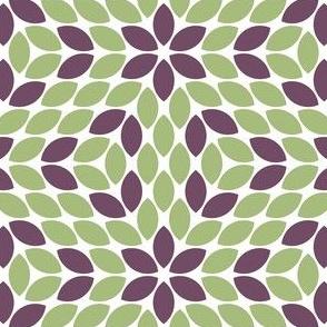 R6R lens 4 : geometric