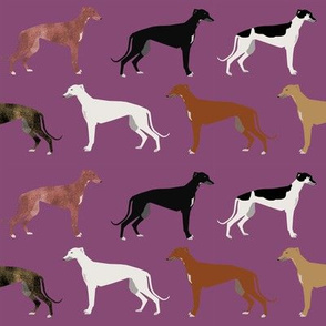 greyhounds fabric cute dog breed fabric best greyhound fabric cute rescue dog fabric