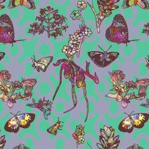 Ghana Butterfly Garden Background Green