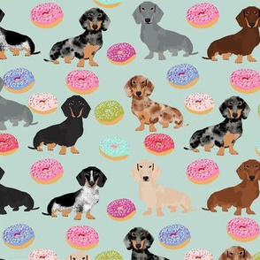 doxie dachshunds dog donuts doughnuts cute dog fabric best doxies dog fabric cute doxie dogs