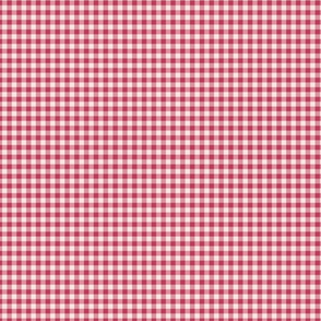 Windswept and Arabesque Gingham ~ Wee